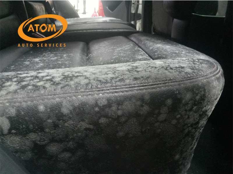 Ghế da ô tô không được vệ sinh và bảo dưỡng sẽ xuống cấp và chứa nhiều vi khuẩn gây bệnh